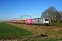 "Bombardier 34994 - RheinCargo ""DE 804"" 20.01.2019 Hulten [NL] Richard Krol"