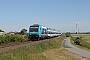 """Bombardier 35211 - DB Regio """"245 213-4"""" 24.06.2020 Lehnshallig [D] Gerd Zerulla"""