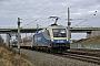 """Siemens 20852 - ODEG """"1116 911-7"""" 29.12.2012 - Dallgow-DöberitzMarcus Schrödter"""