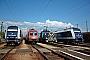 "Siemens 21404 - Metrans ""761 003-3"" 09.07.2012 Budapest-Ferencv�ros [H] M�rk Fekete"