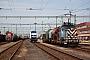 """Siemens 21684 - Metrans """"761 004-1"""" 23.08.2012 Rajka [H] Márk Fekete"""
